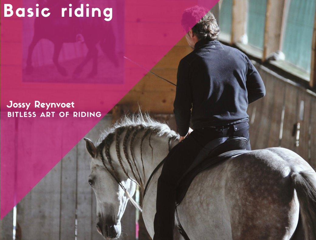 2. Basic riding <br><strong>€74,95</strong>