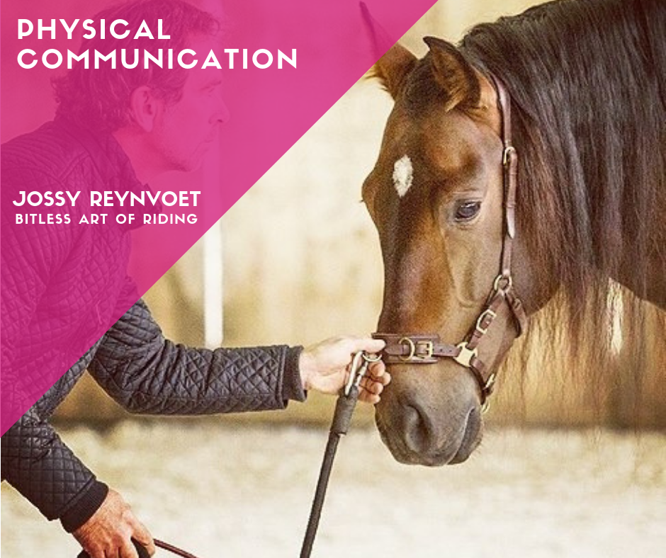 Part 2: Physical Communication <br><strong>Price € 54,95</strong>