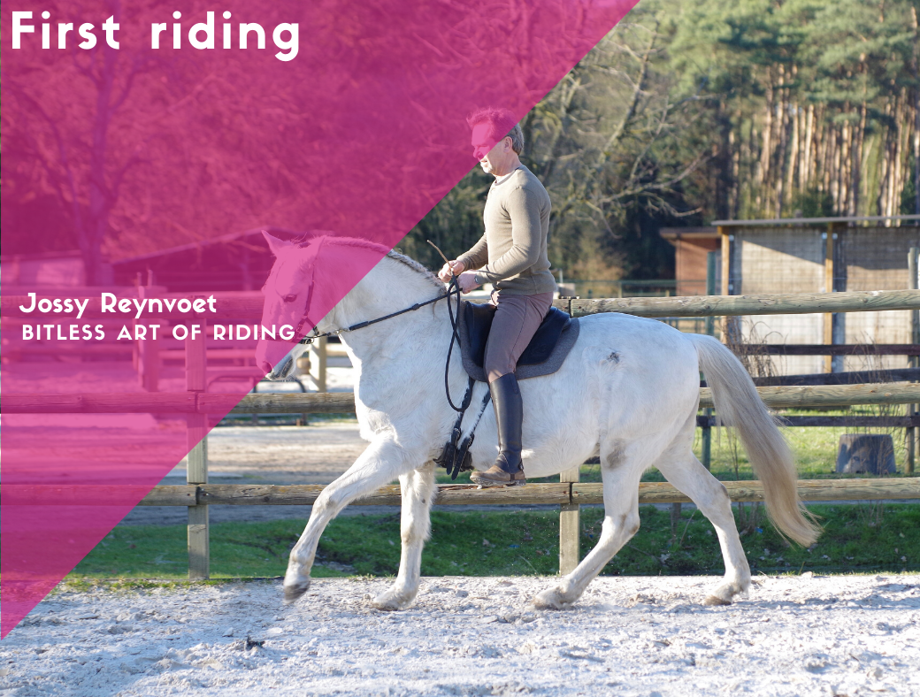 3. First riding <br><strong>€64,95</strong>