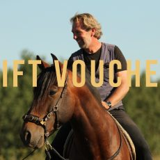 gift voucher for the webshop of the bitless art of riding